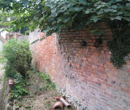 more areas of overgrown raised beds